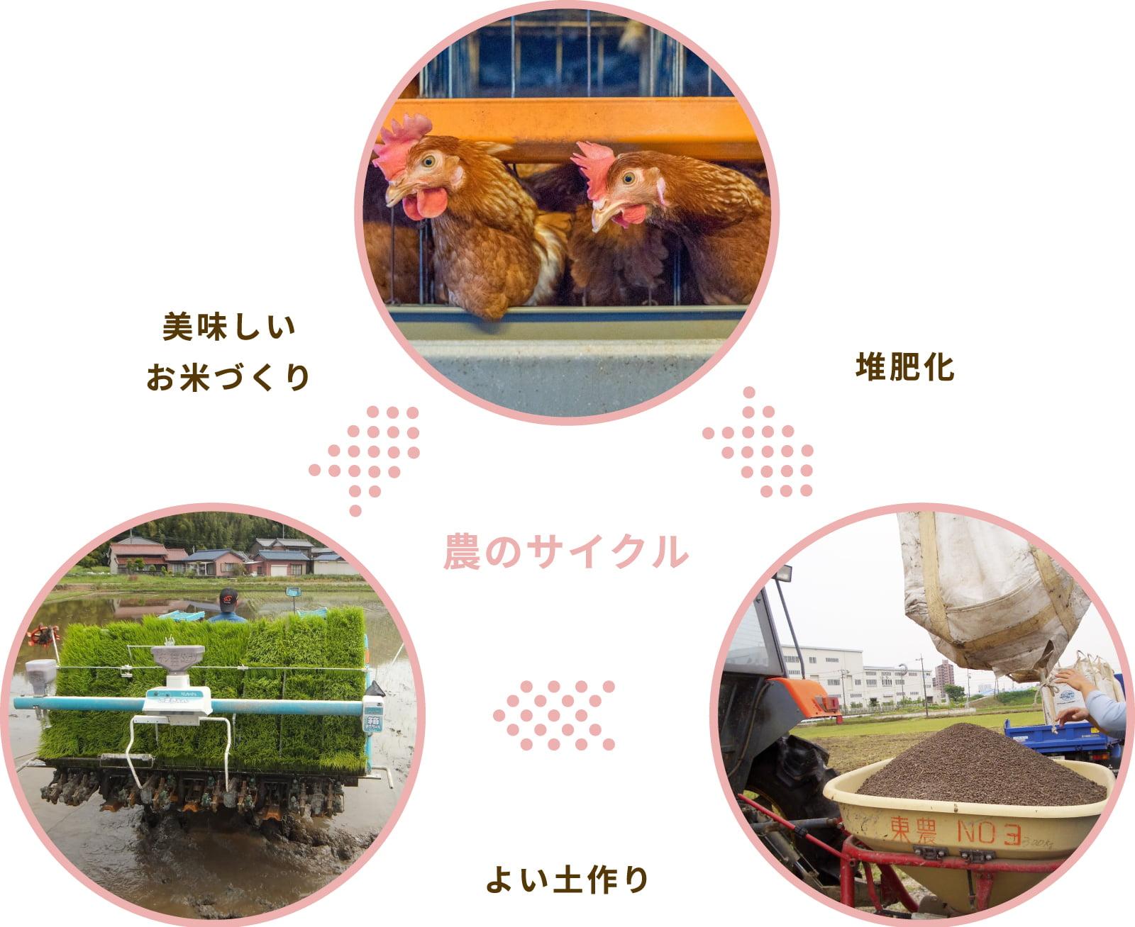 画像:農のサイクル